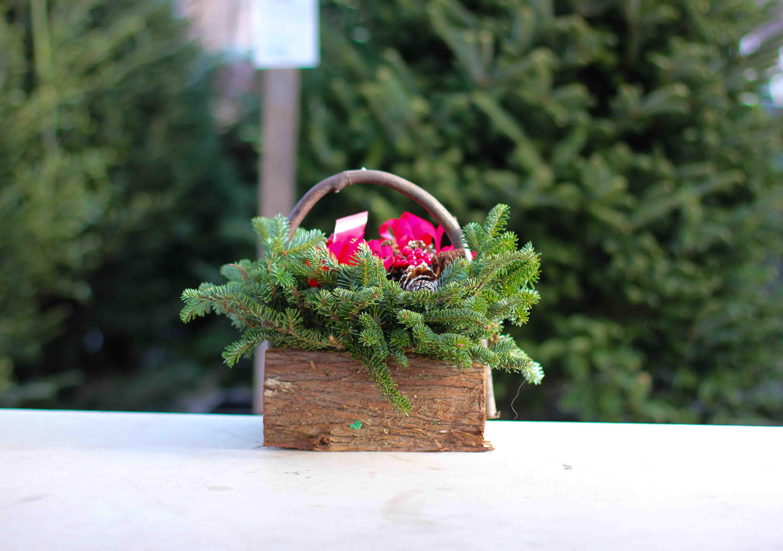 Small Decorated Cedar Logs